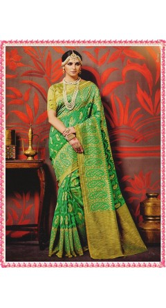 Green & Golden Colour With Mango Designs